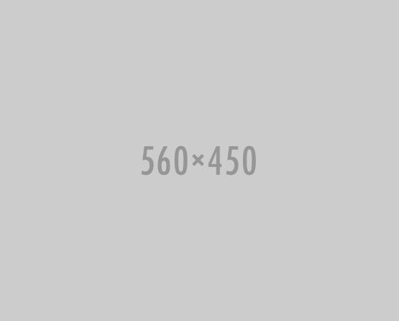 560x450